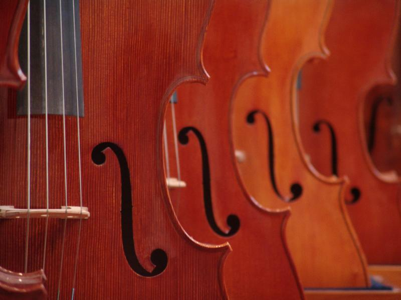 Violinen (Symbolfoto)