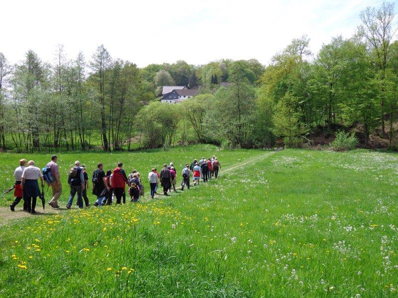 Bergische Wanderwoche 2014 – Über 70 Wanderungen locken ins Bergische Land