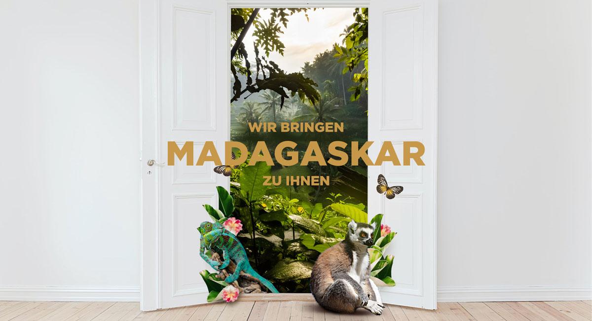 Ein Abend in Madagaskar