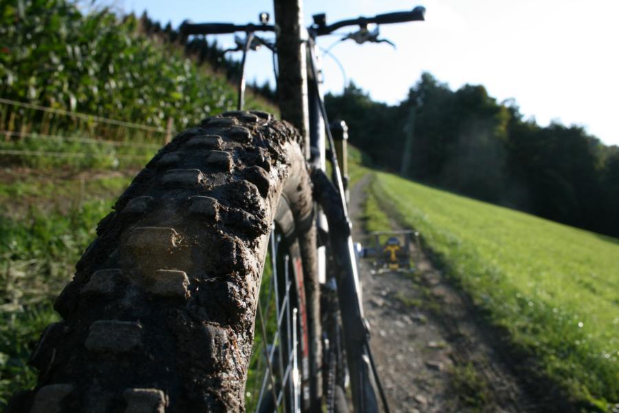 Profil eines Mountainbikereifens