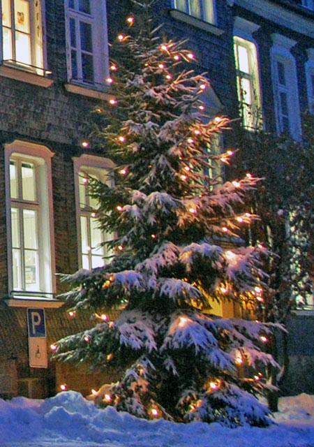 Weihnachtsbaum vor dem Waldbröler Rathaus, fotografiert im Dezember 2009